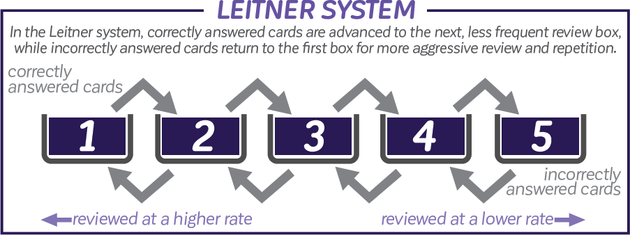 Leitner System Graphic